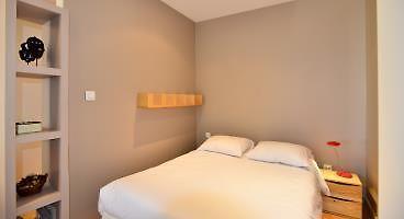 appart ambiance terrasse lyon. Black Bedroom Furniture Sets. Home Design Ideas